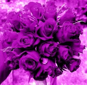 Chelsea Flower Show 2012 008